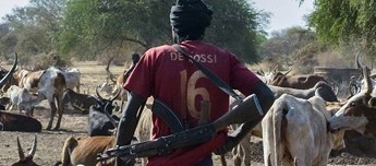 A man carrying a gun walks past cattle at Kirgui village in Udier. (Simon Maina, AFP)