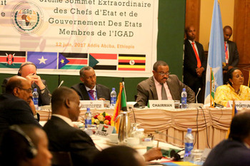 File photo: the IGAD summit in Addis Ababa on Monday