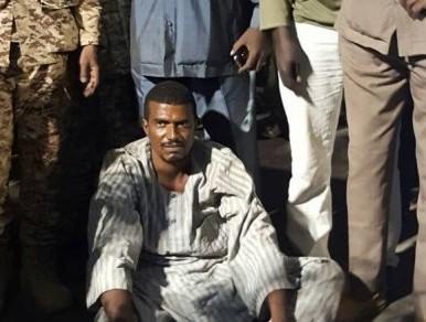 Sudan govt captures Darfur rebel leader